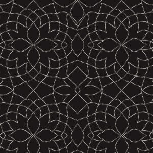 Black & White Pretty Points13913