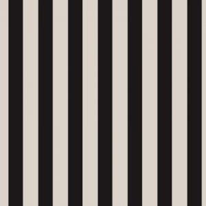 Black & White Graphic lines 13919