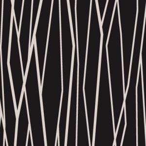 Black & White Graphic lines 13920