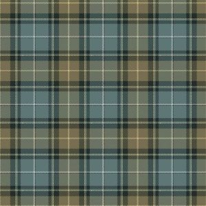 Contemporary Tartan Avon O-M-TOTION-F