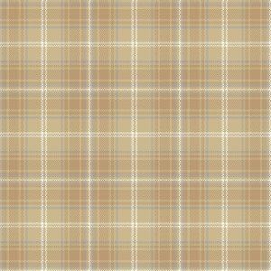 QuickWeave Classic tartan Design 2-b1716
